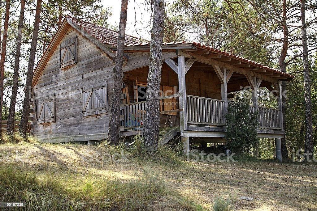 Cabaña en el bosque rodeada de arboles stock photo