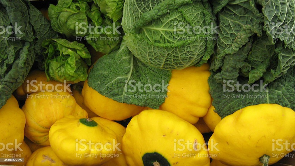Cabbage and pattypan squash stock photo