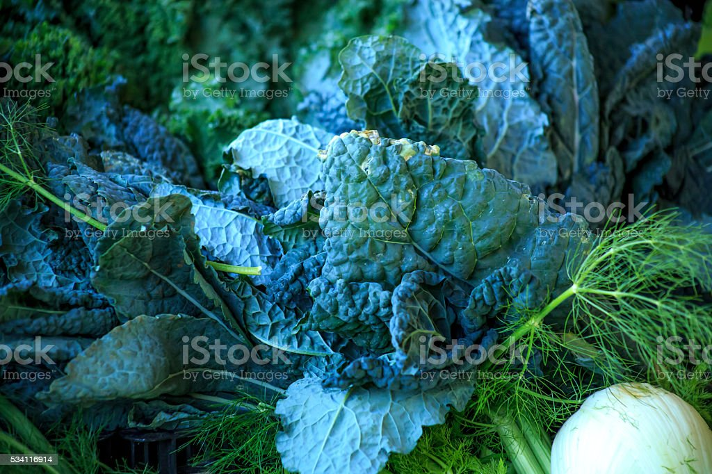 Cabbage and vegetables stock photo