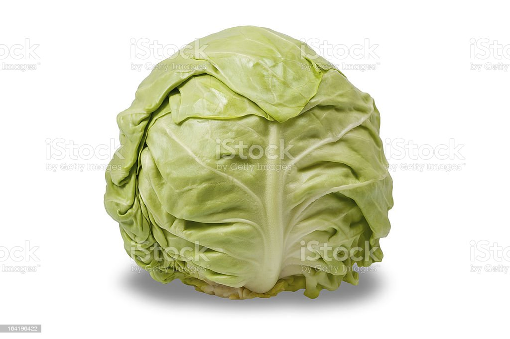 cabbage head royalty-free stock photo