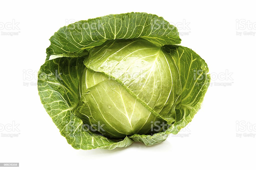 Cabbage isolated on a whiteground. royalty-free stock photo