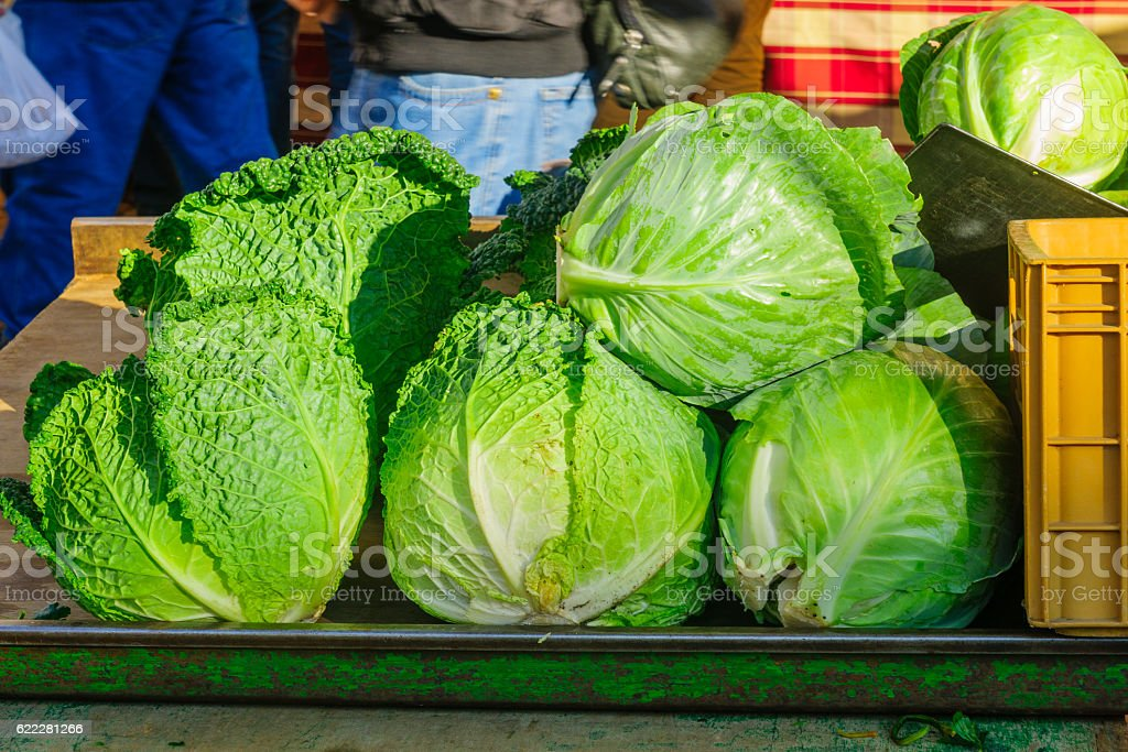 Cabbage on sale in a French market stock photo