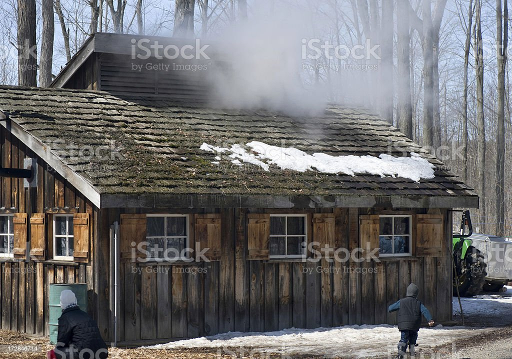 Cabin for making Maple Syrup royalty-free stock photo