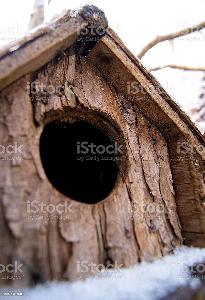 Cabin in the Branches royalty-free stock photo
