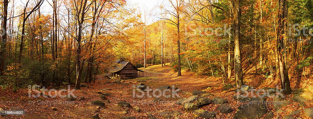 Cabin in the Forest stock photo