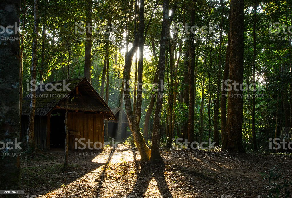 Cabin in The Wood stock photo