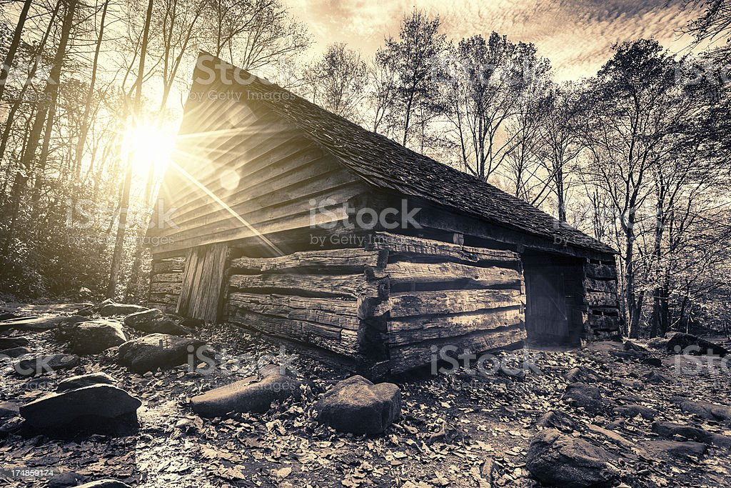 Cabin in the Woods royalty-free stock photo