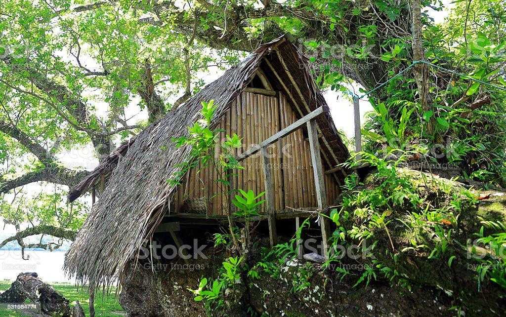 Cabin on tree-Vanuatu stock photo