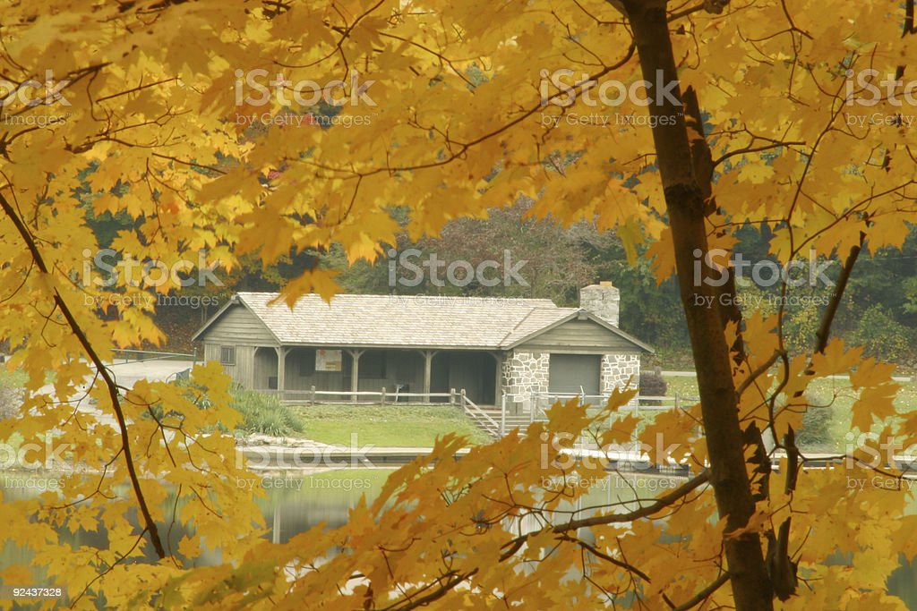 Cabin Through The Trees - Youngstown, Ohio stock photo