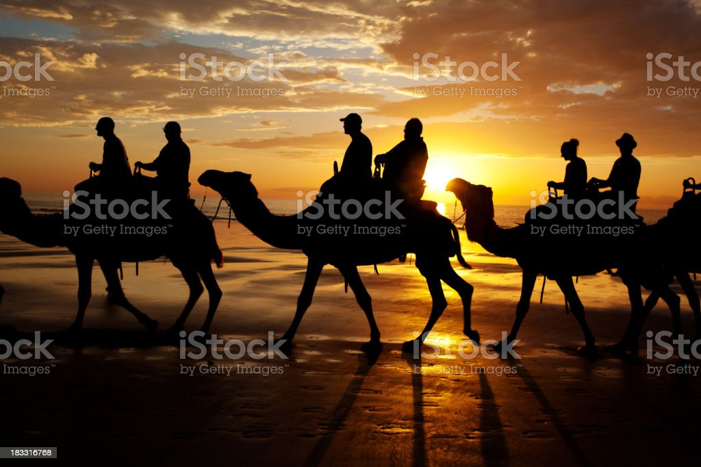 Cable beach sunset camel ride stock photo