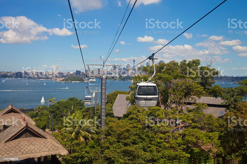 Cable Car Ascending in Sydney Zoo stock photo
