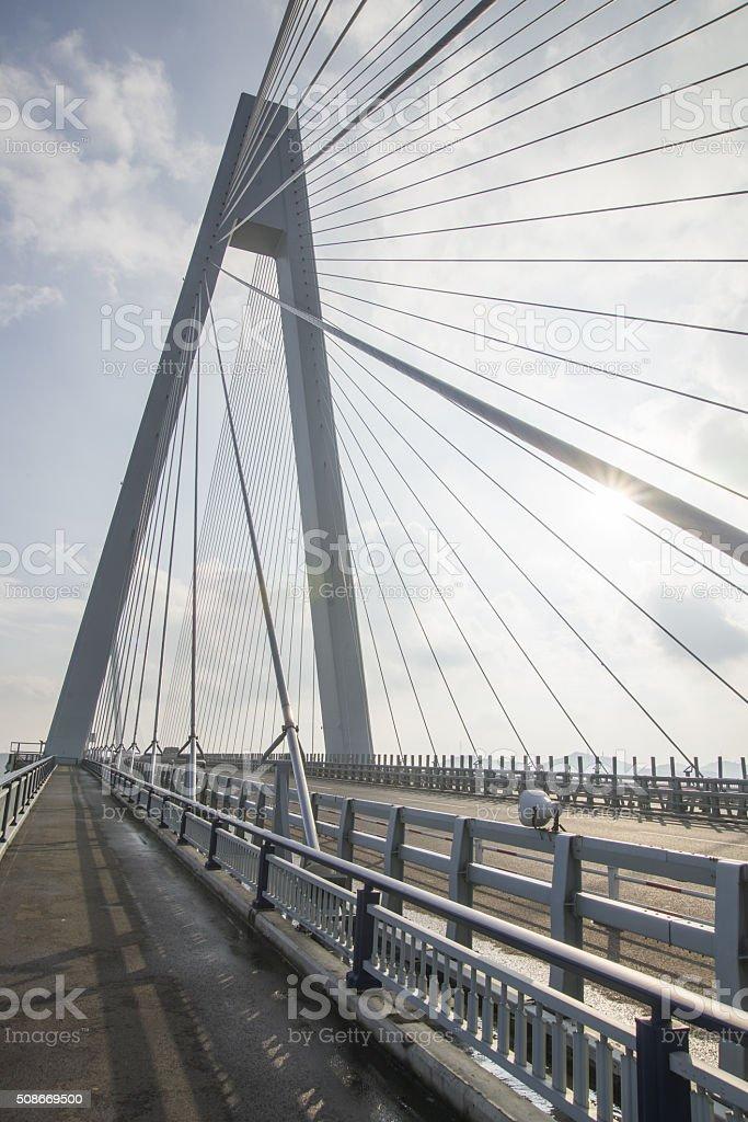 Cablestayed Bridge stock photo 508669500 | iStock