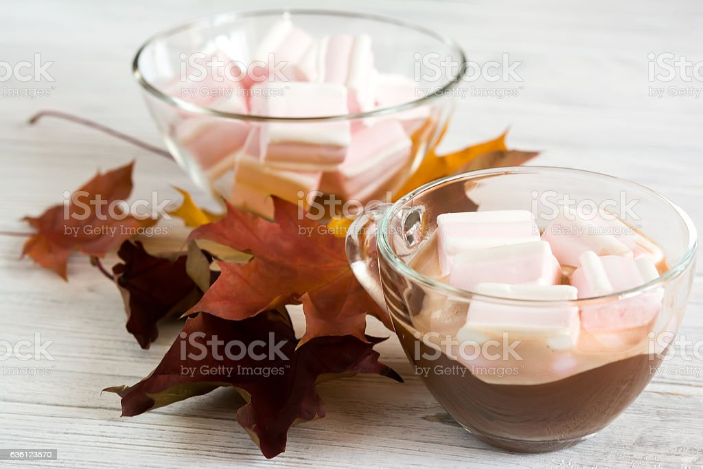 Cacao and marshmallows on wooden background stock photo