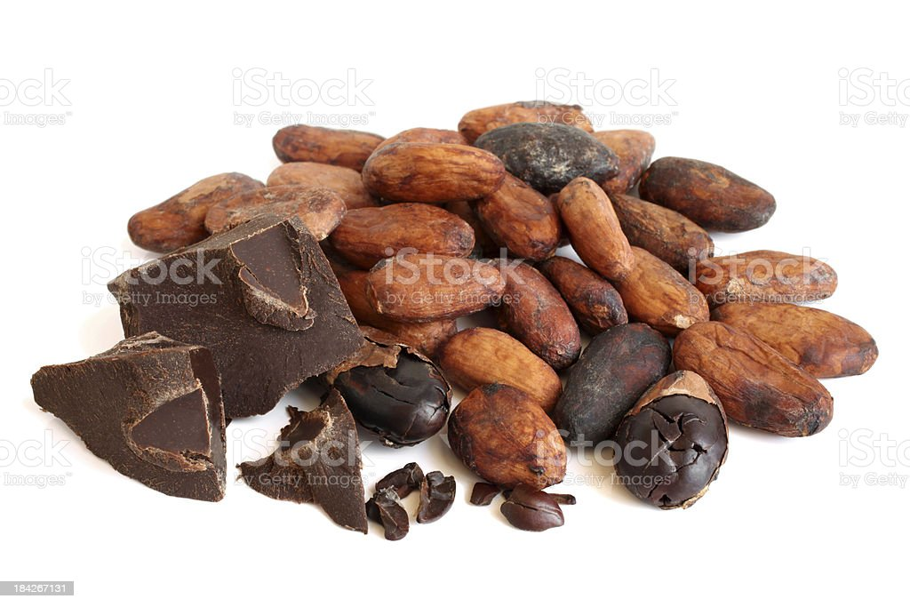 Cacao beans and chocolate royalty-free stock photo