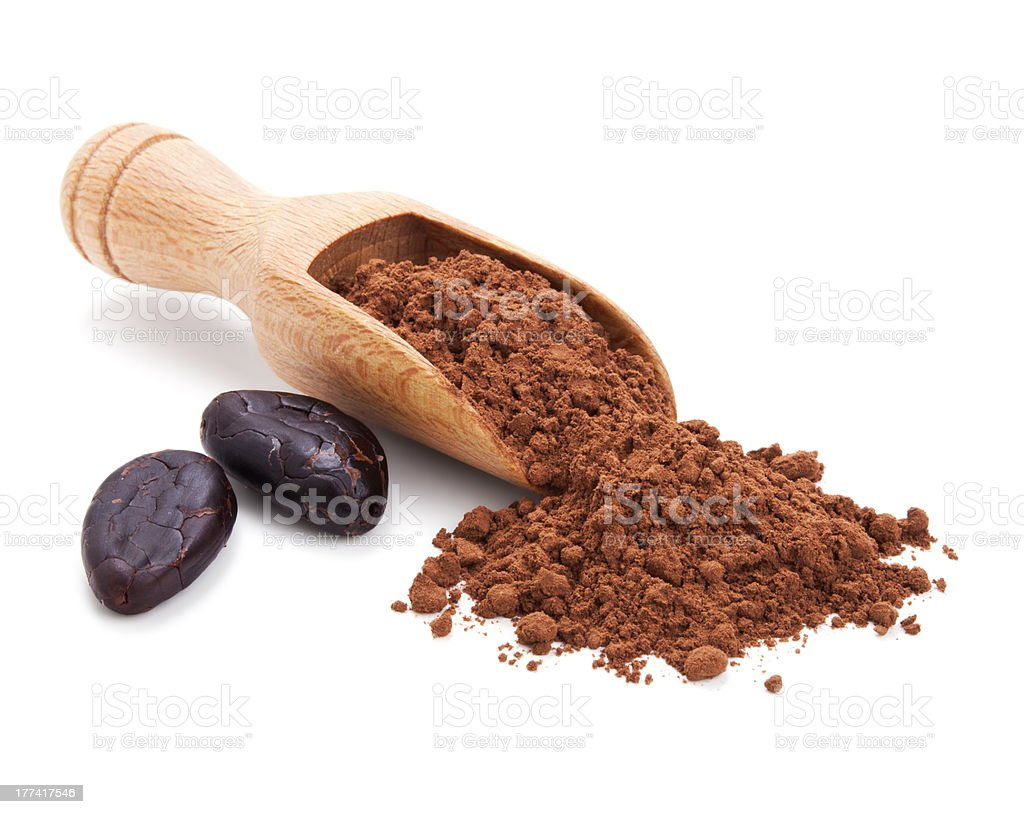 cacao beans and cocoa powder isolated on white stock photo