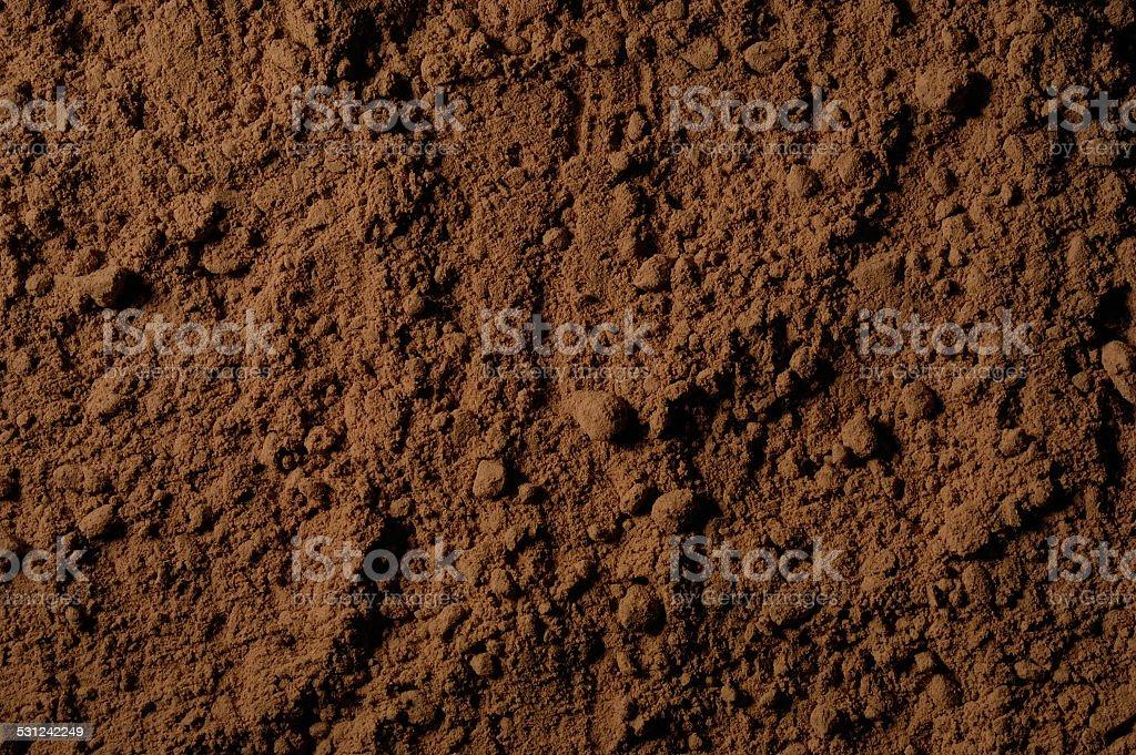 Cacao en polvo stock photo