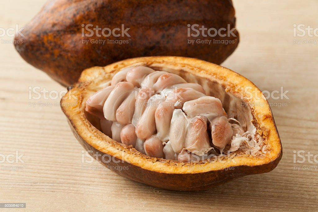 Cacao fruit and raw cocoa beans in the pod stock photo