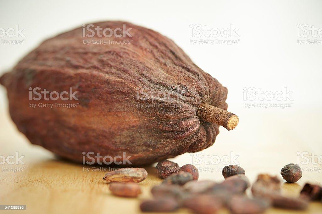 Cacao stock photo