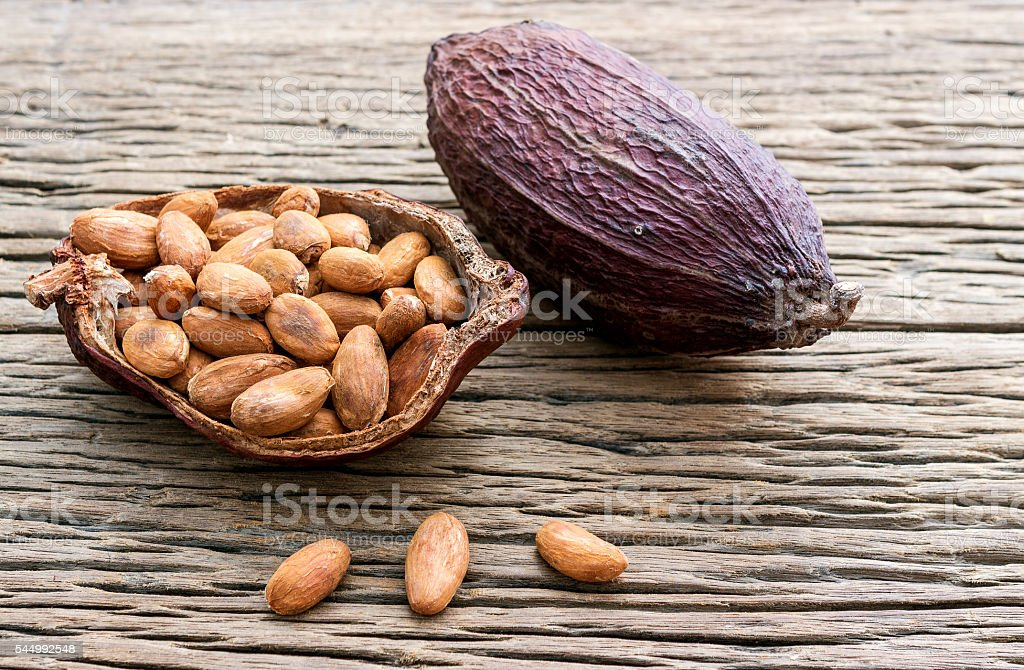 Cacao seeds is ready to be made cacao powder stock photo