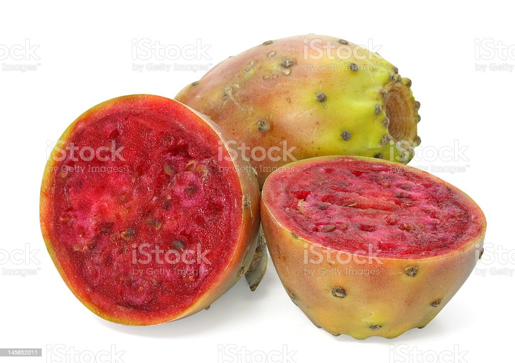 Cactaceous fig stock photo