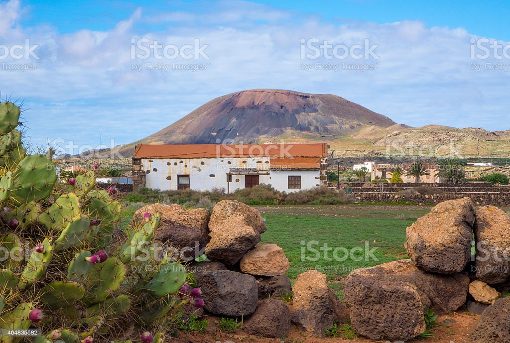 Cacti and Mountain view La Oliva Fuerteventura  Canary Islands Spain stock photo