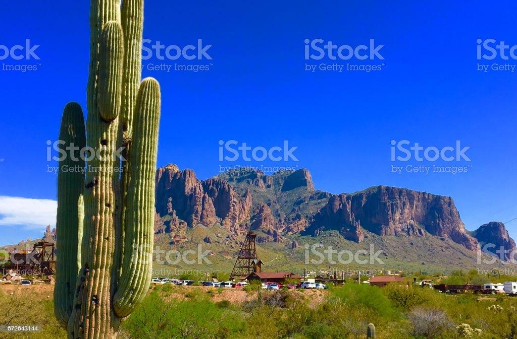 Cactus and Mountain stock photo