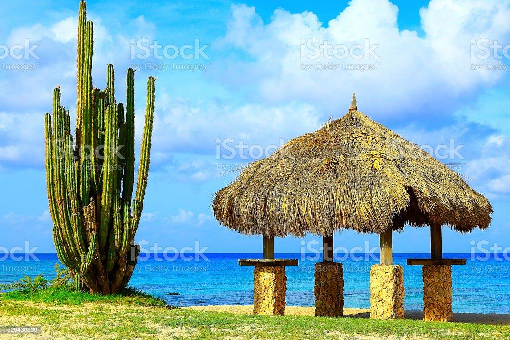 Cactus and Palapa - Aruba beach, Dutch Antilles, Caribbean Sea stock photo