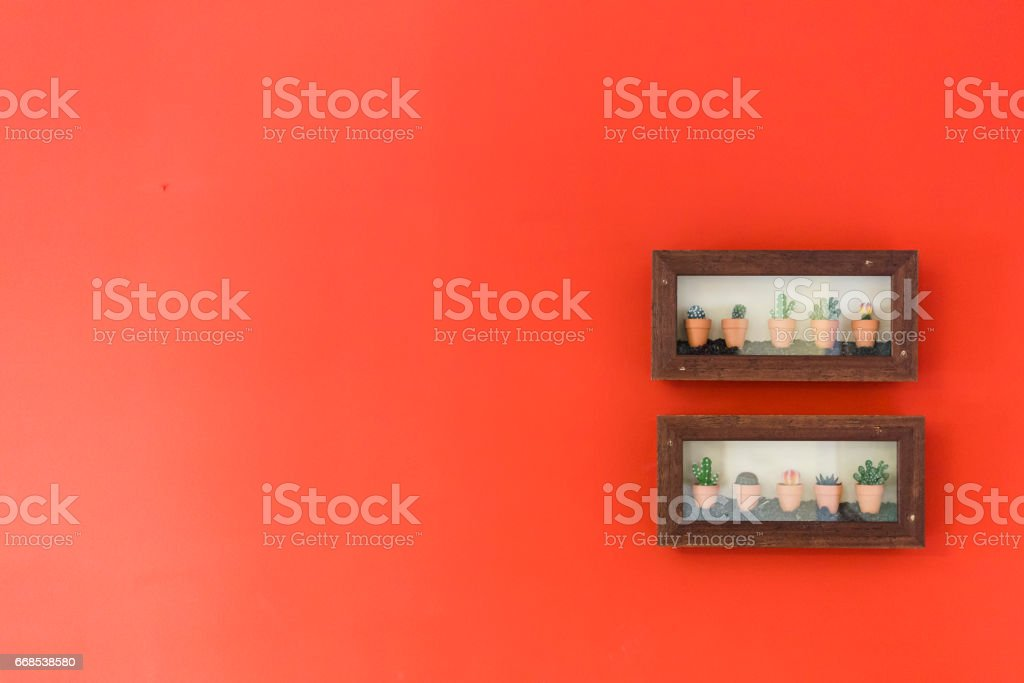 Cactus decoration plants on a solid red background stock photo