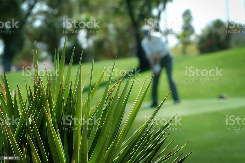 Cactus desert foreground - golf course royalty-free stock photo