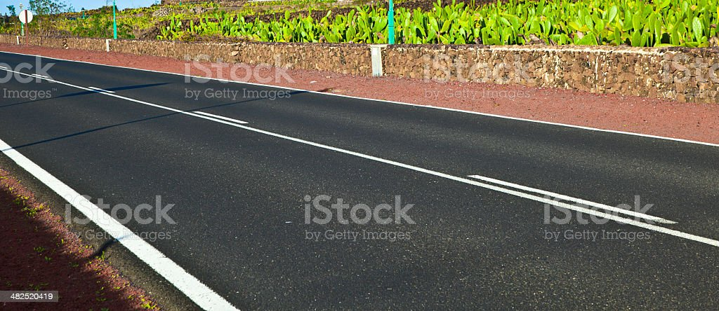 cactus garden with street in lanzarote stock photo