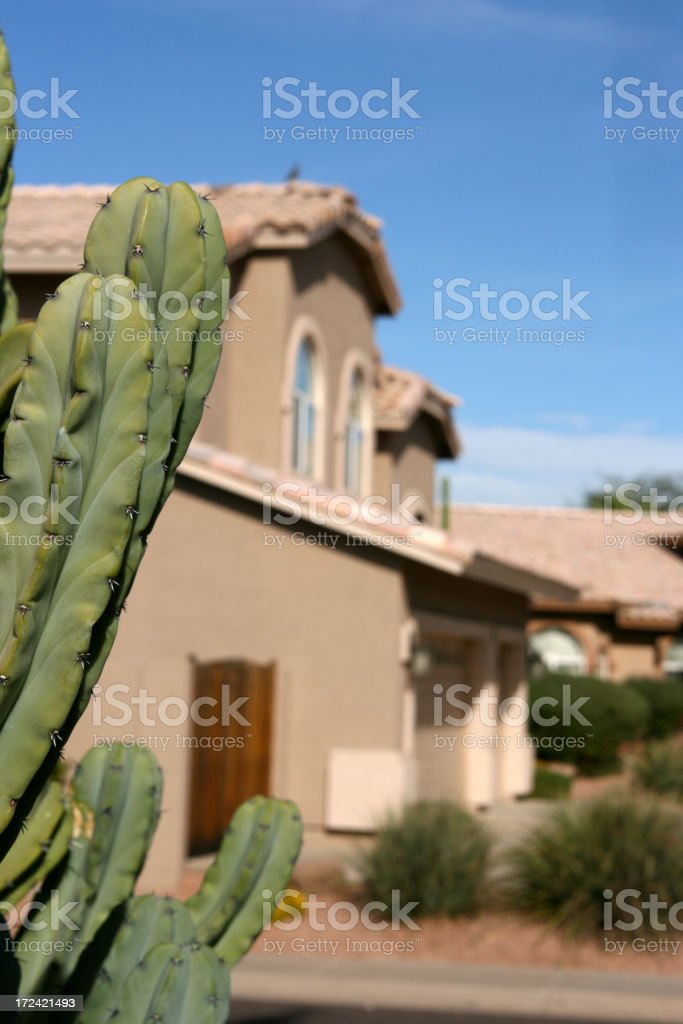 Cactus Home royalty-free stock photo