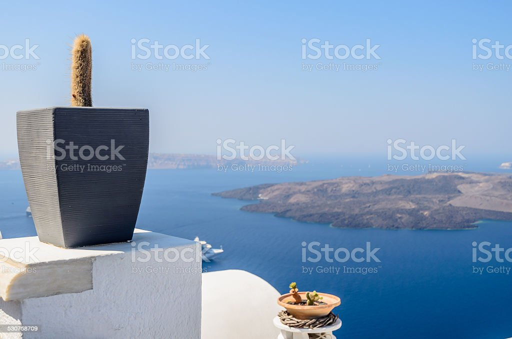 Cactus in vase as decoration on the terrace of Santorini stock photo