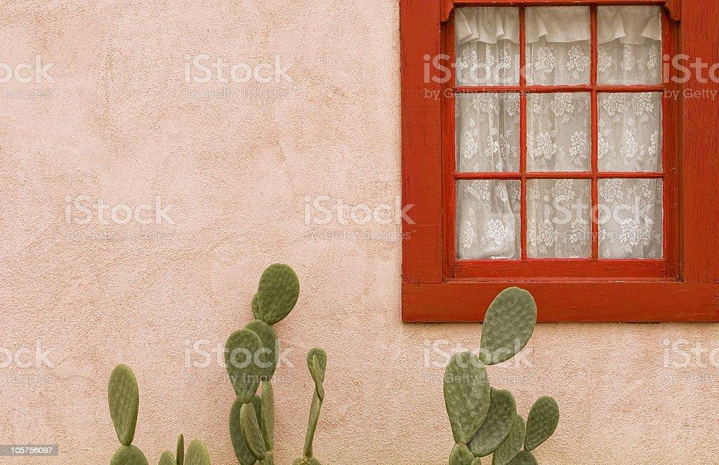 Cactus Serenade stock photo