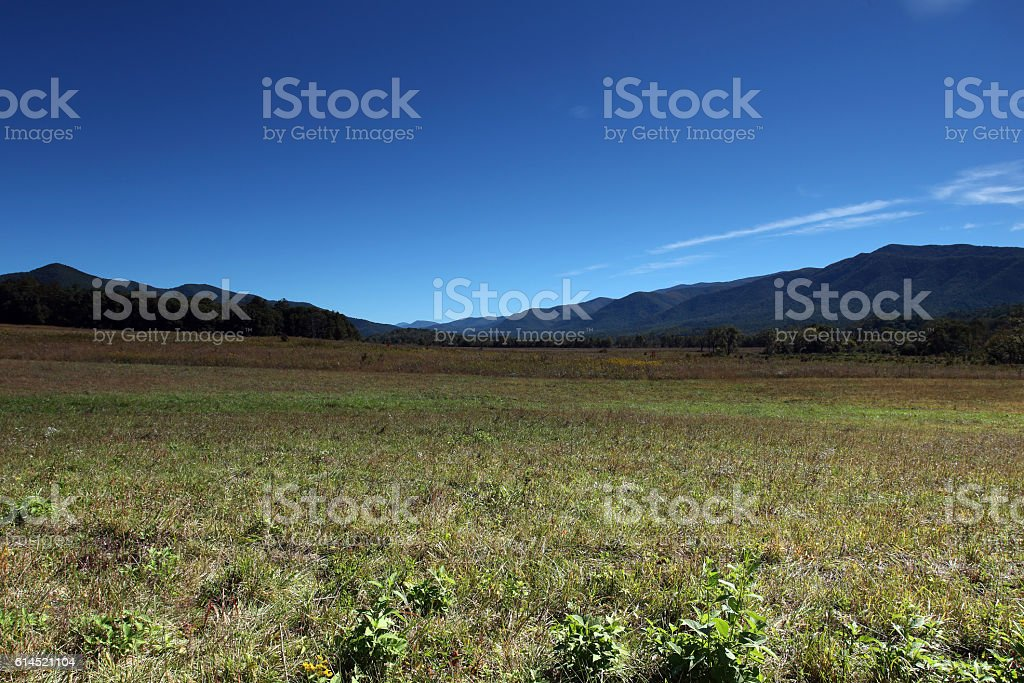 Cades Cove 101601 stock photo