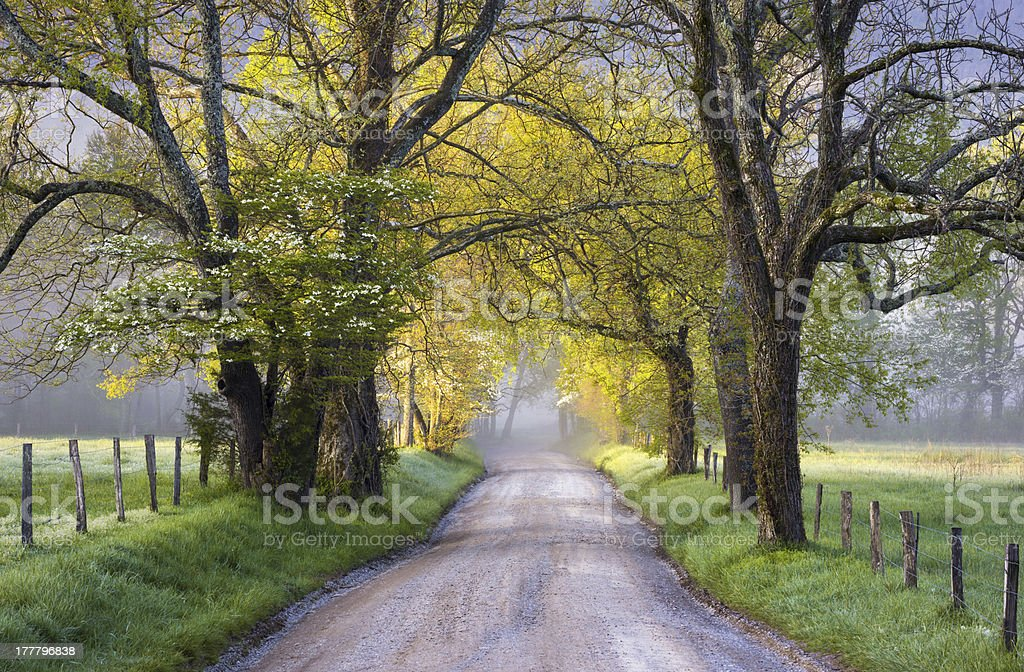 Cades Cove Great Smoky Mountains National Park Scenic Landscape Spring stock photo