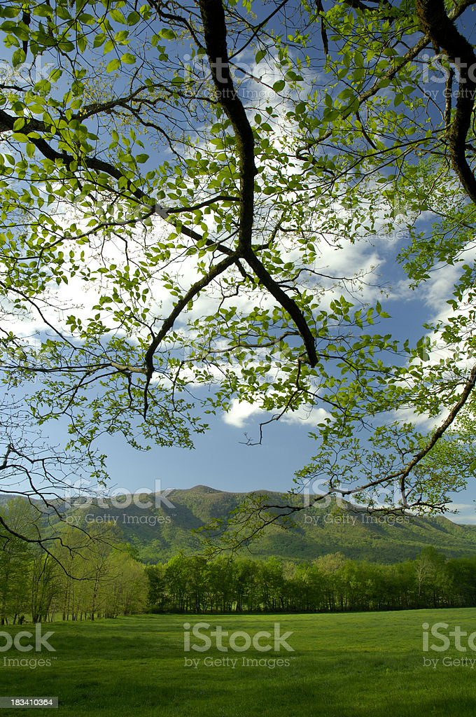 Cade's Cove in early spring, Great Smoky Mountains National Park stock photo