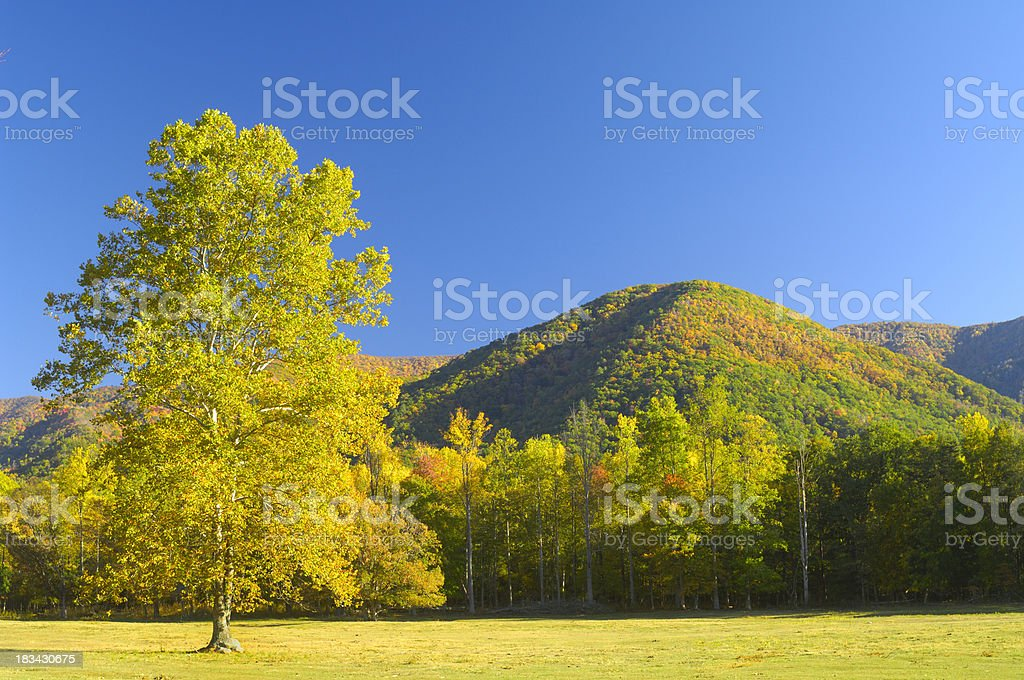 Cades Cove in Late October, Great Smoky Mountains royalty-free stock photo