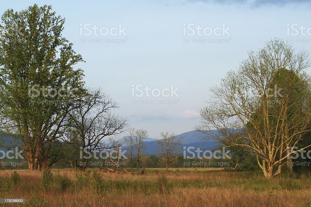 Cades Cove Meadow  Smoky Mountains Tennessee stock photo