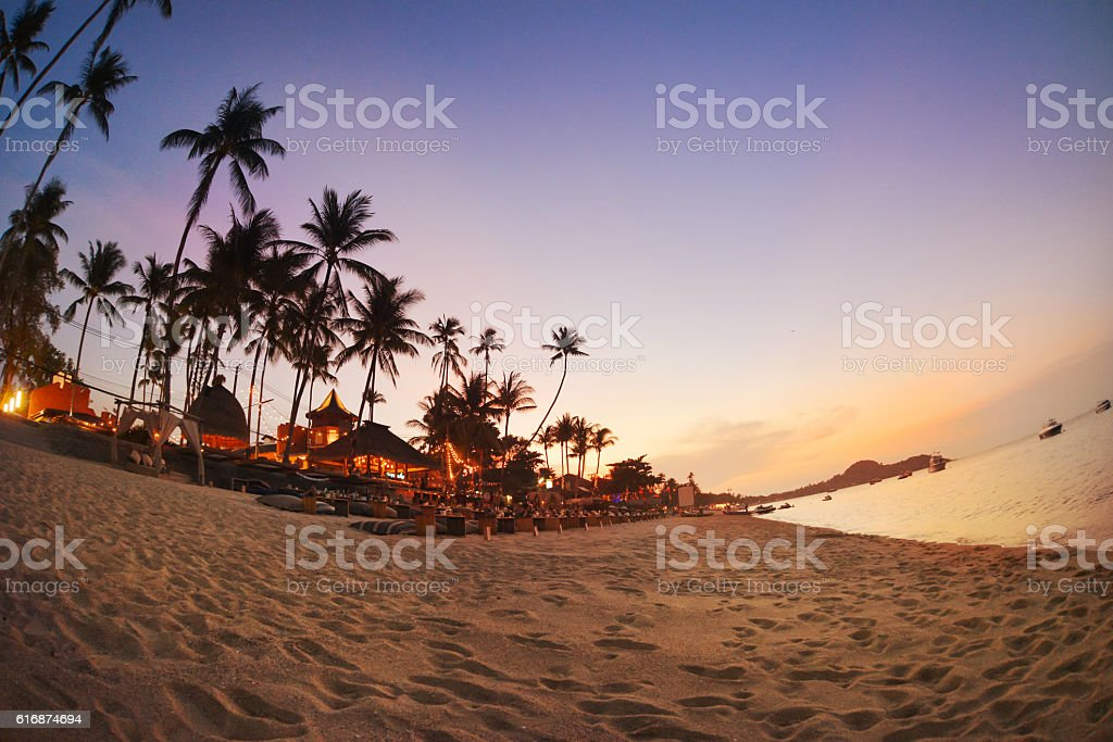 Cafe and palms on the beach in the evening stock photo