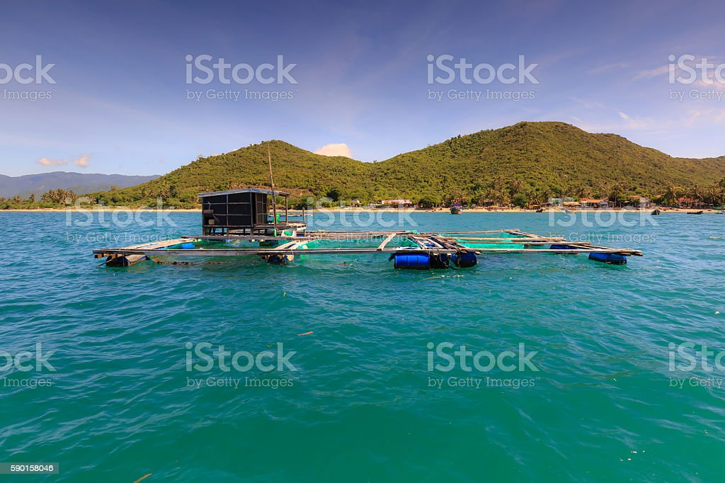 Cage aquaculture farming on sea stock photo