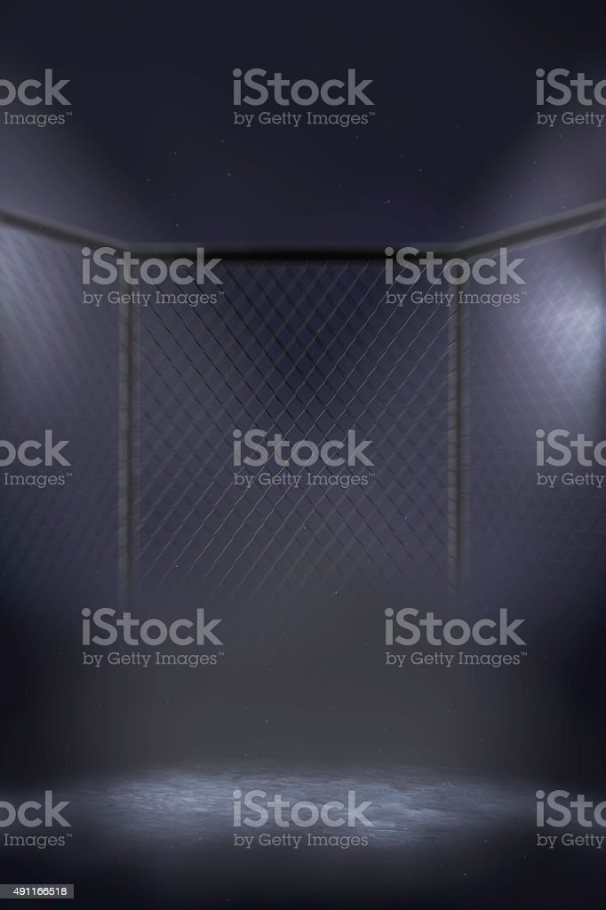 MMA cage arena stock photo
