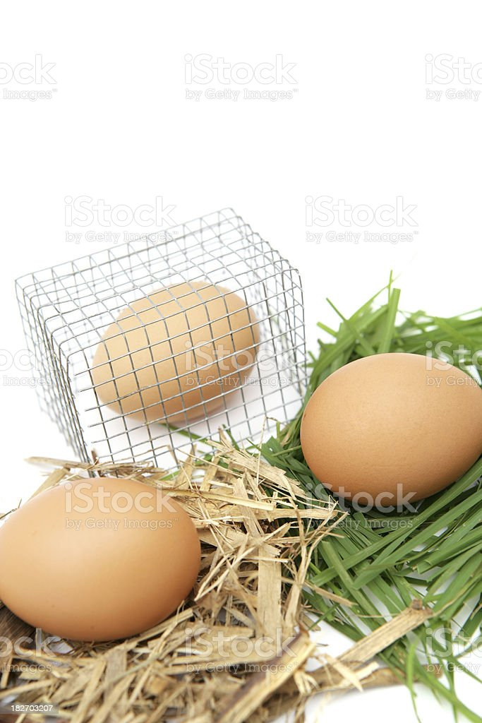 'Cage, Barn Laid and Free Range Eggs' stock photo