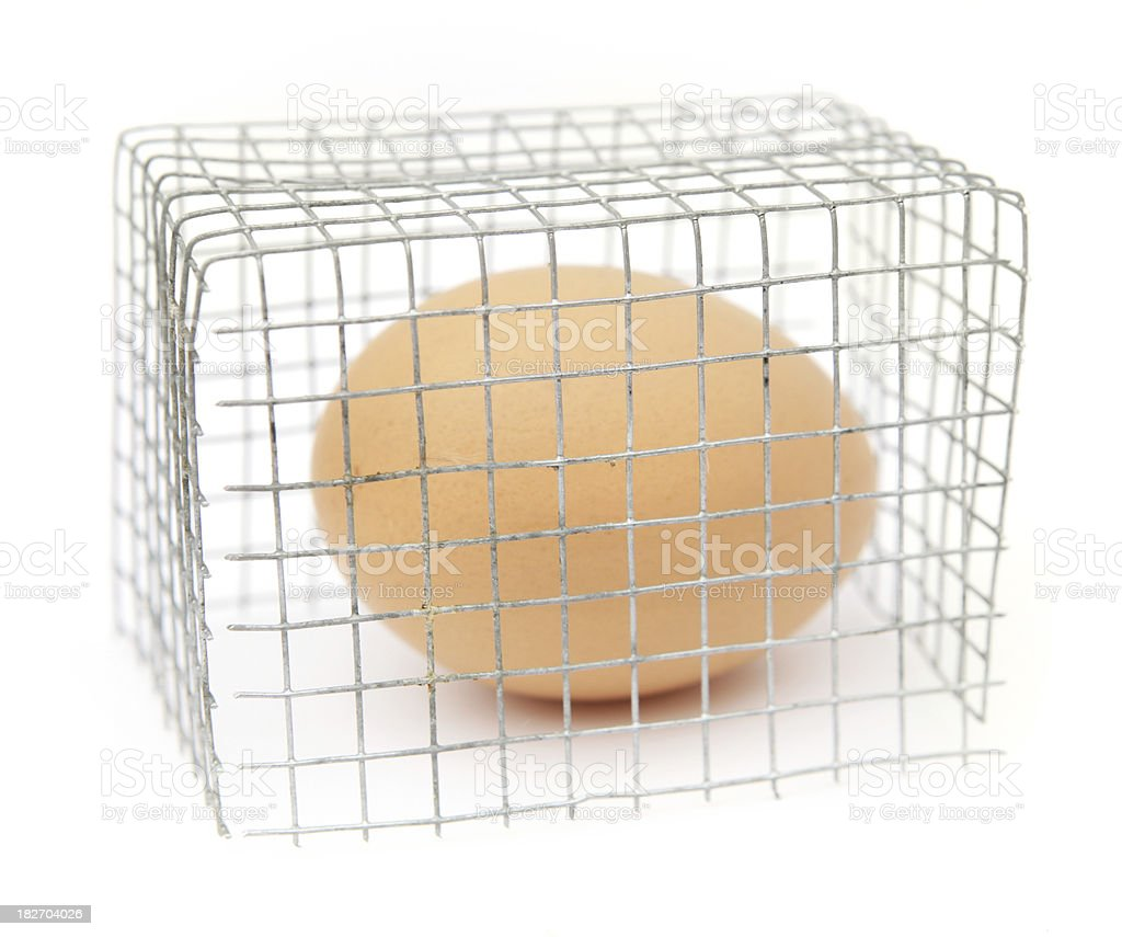 Cage Egg stock photo