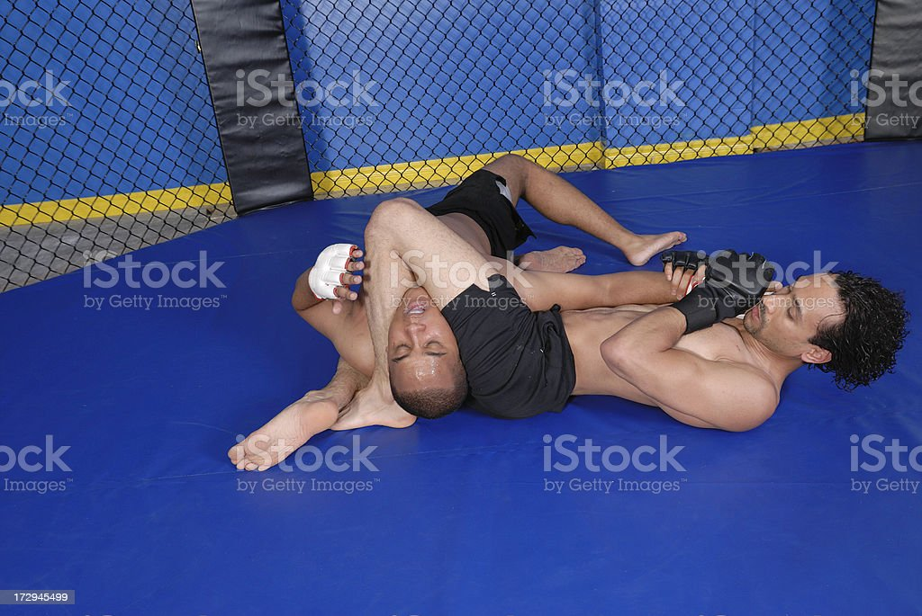 Cage fighting royalty-free stock photo