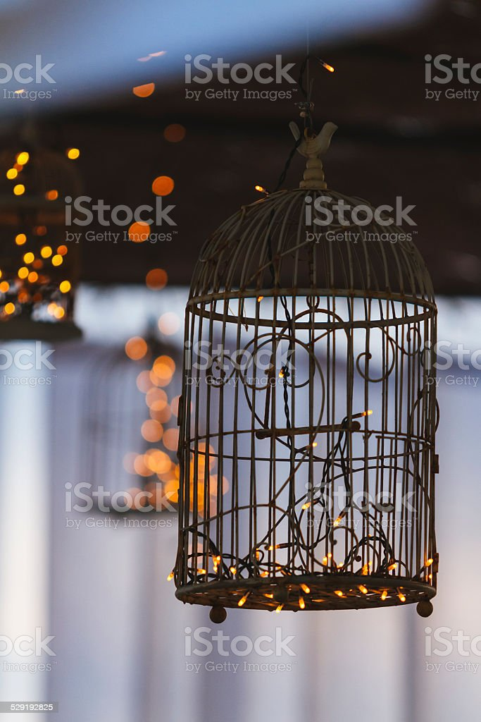 Cage for pet birds with lights stock photo