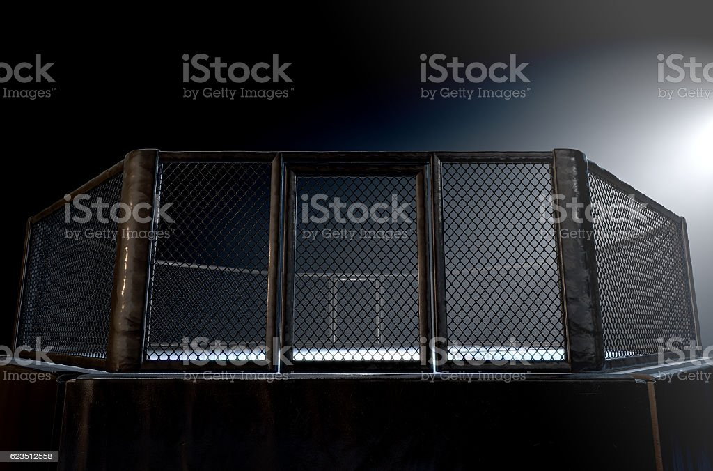 MMA Cage Night stock photo