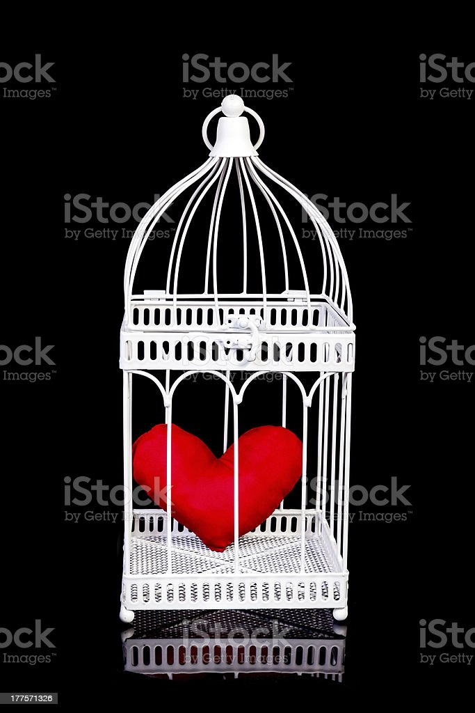 Cage royalty-free stock photo