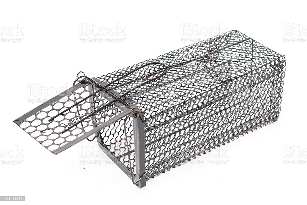 Cage Rat Trap on white background stock photo