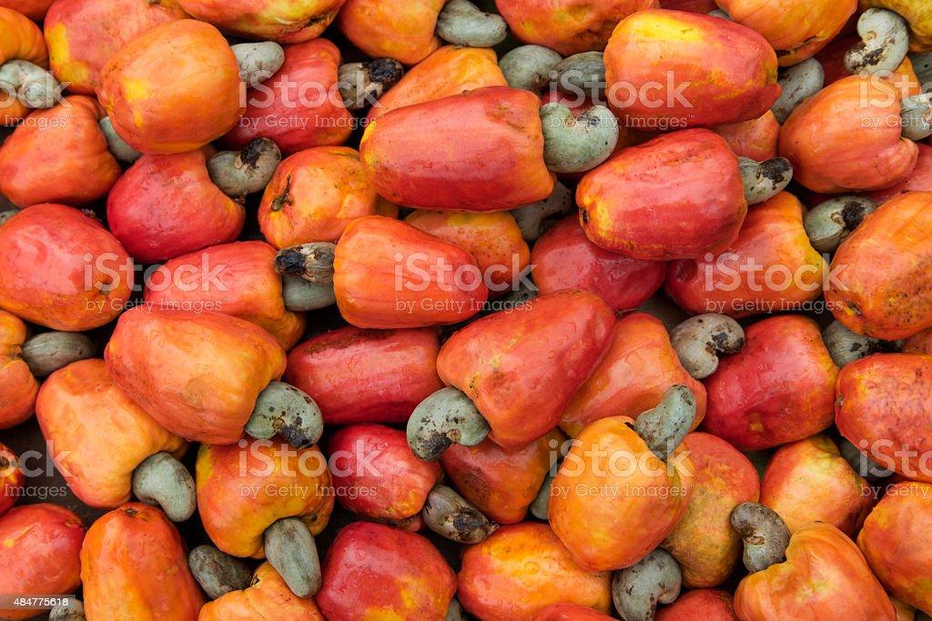 Caju brazilian fruit stock photo