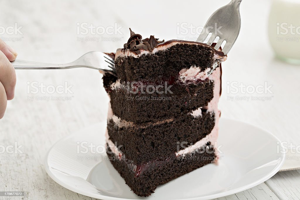 Cake For Two royalty-free stock photo